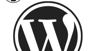 Wordpress Theme kaufen