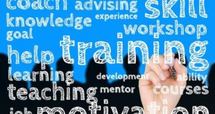 Online Marketing Seminare